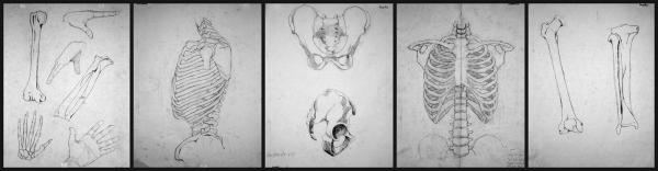 Brennan Fruge Sketch