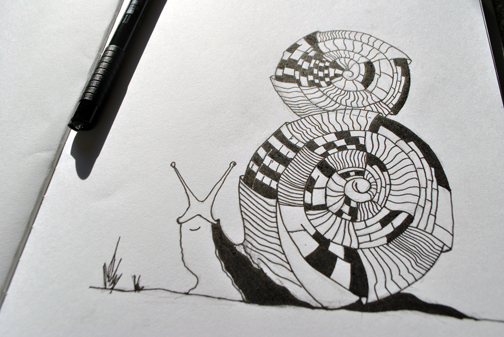 snail_sketch_ink