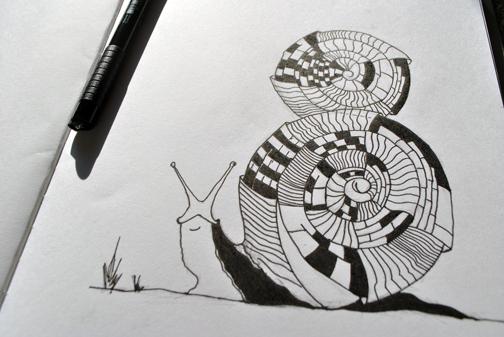 snail_sketch_ink