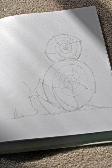 snail_sketch_int